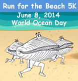 Run for the Beach 5K